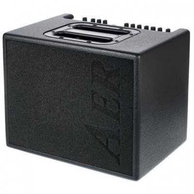 Acoustic Guitars Amp