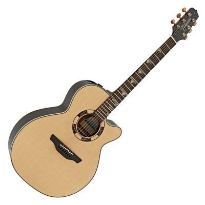 Electro Acoustic Guitars